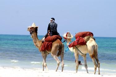 Incentive Tunesien