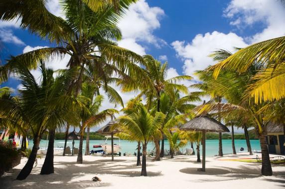 Incentive Mauritius
