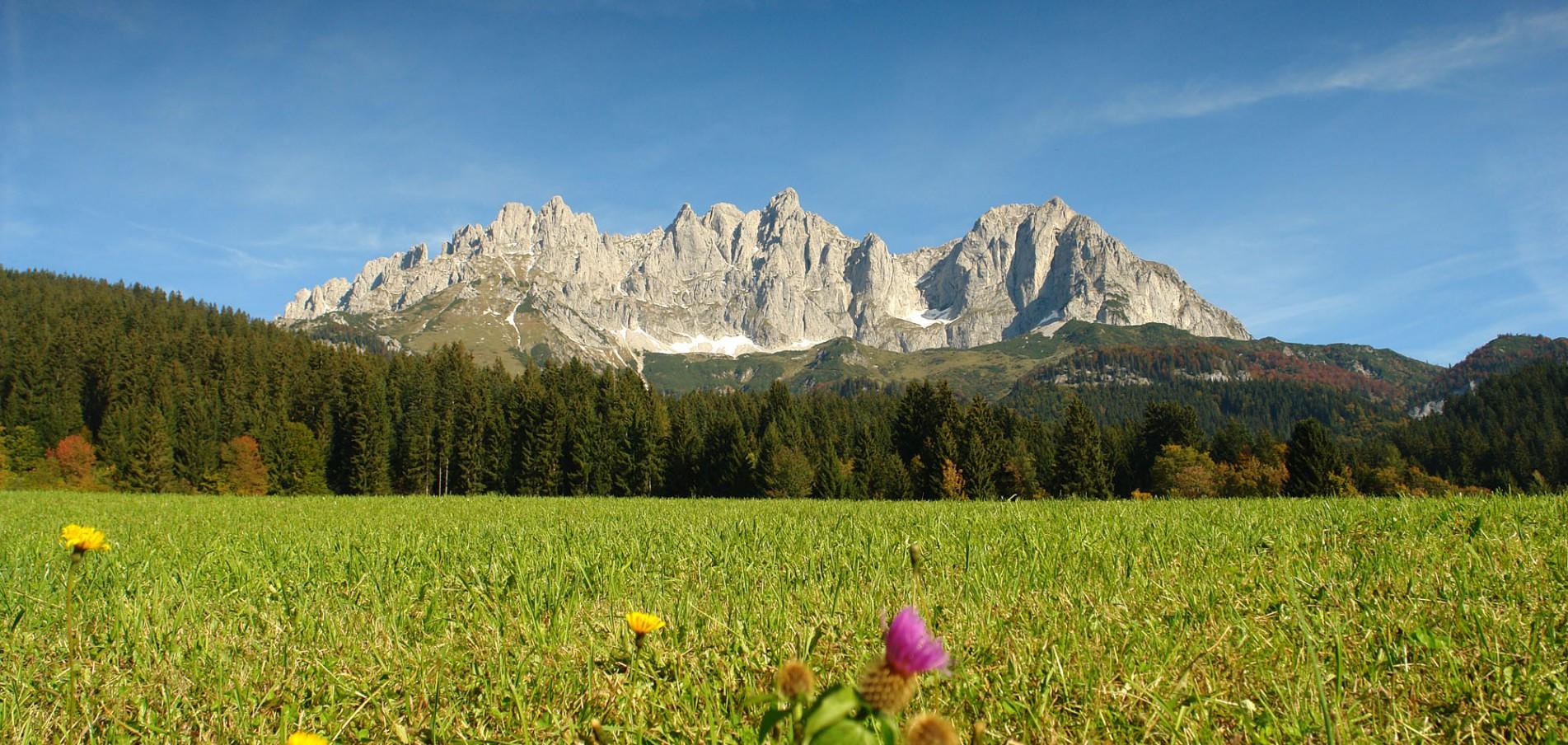 Willkommen in Tirol ... im Herzen der Alpen!