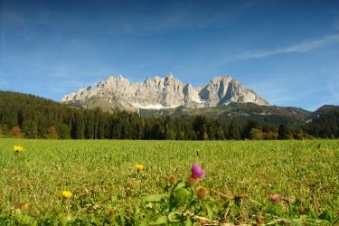 Incentive Tirol