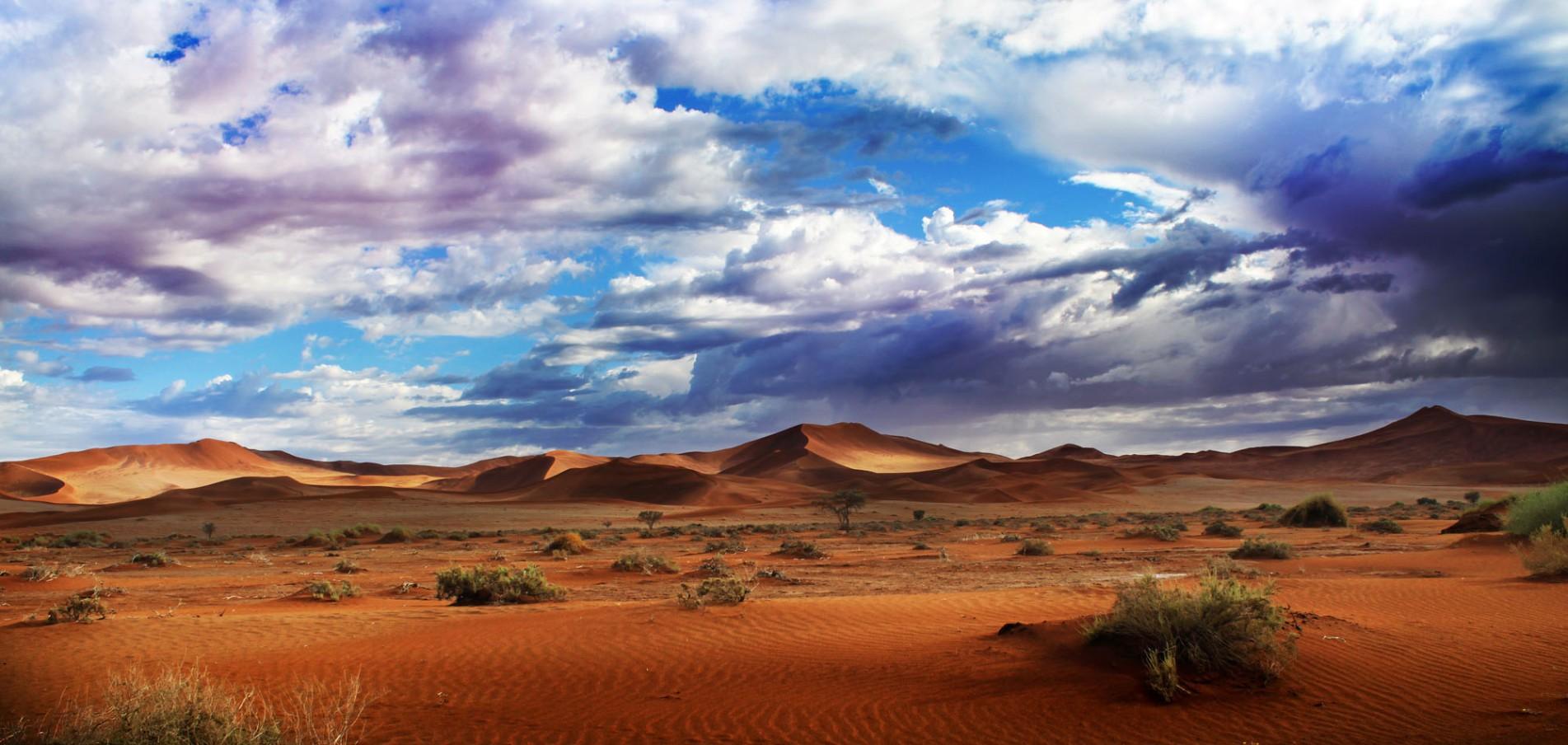 WILLKOMMEN IN NAMIBIA ...Wildlife pur!