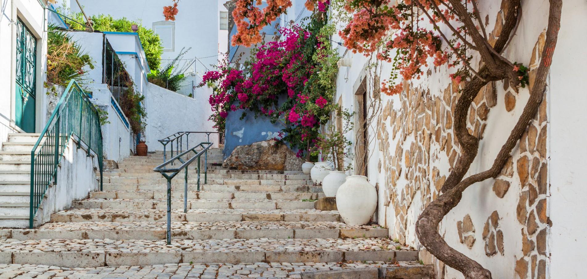 Willkommen an der Algarve ...wo der Frühling schon im Februar beginnt!