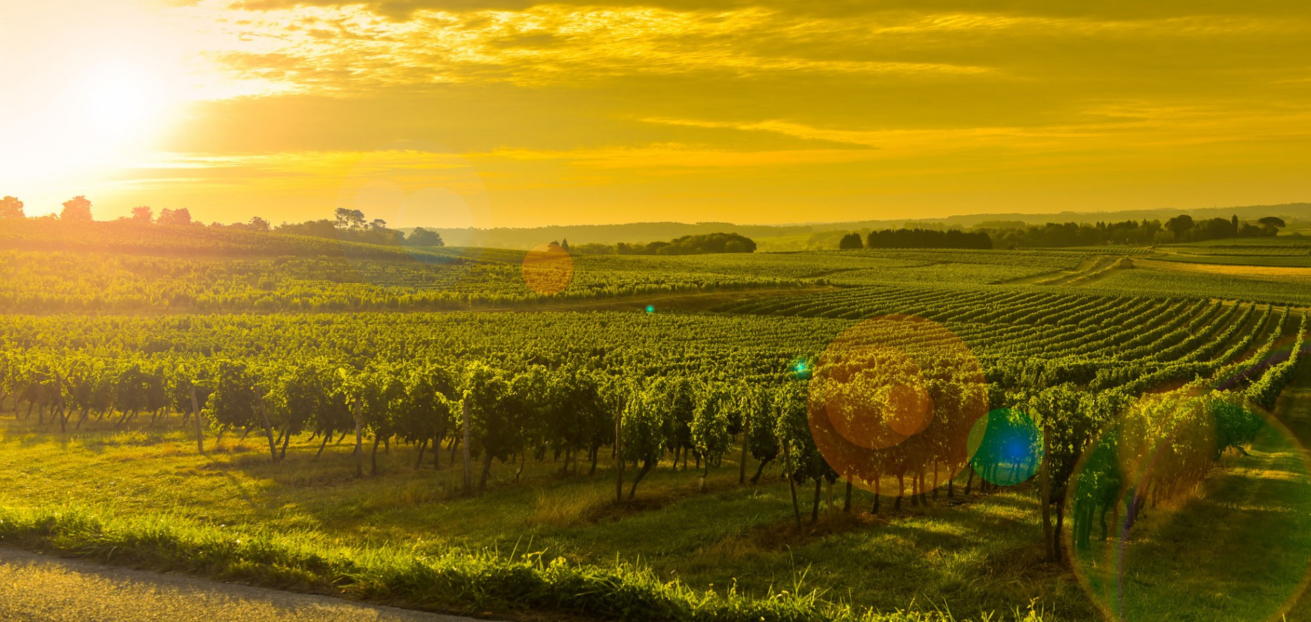 Willkommen in Bordeaux ... in der Welthauptstadt des Weins!