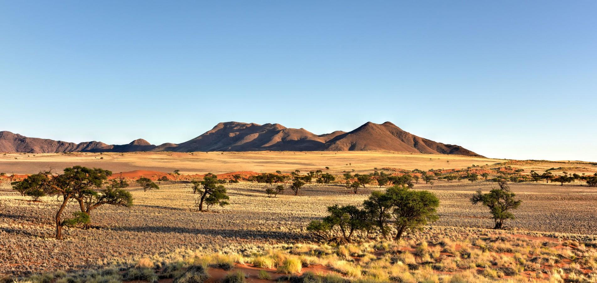 Willkommen in Namibia ... Wildlife pur!