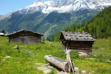 Incentive Innsbruck