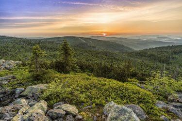 Incentive Bayerischer Wald