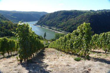 Incentive Rheingau